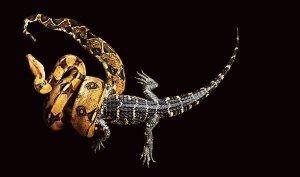 snake-grid-span-articleLarge-v2