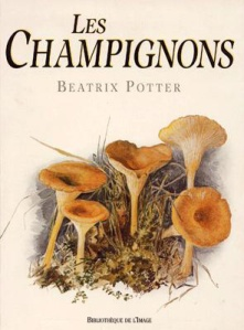 beatrix-cover