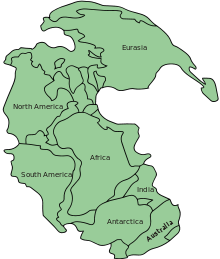 220px-Pangaea_continents.svg