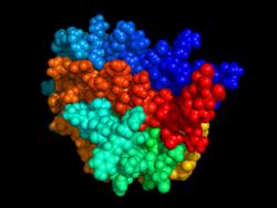 250px-Erythropoietin