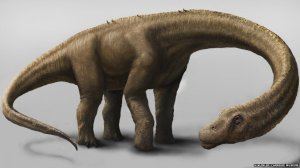 _77352667_dreadnoughtus