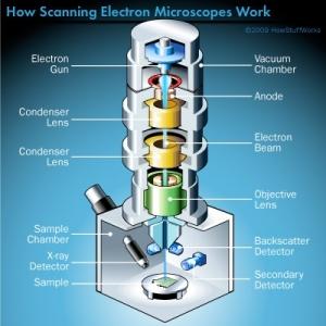 scanning-elecron-microscope-illustration