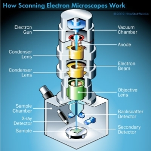 scanning-elecron-microscope-illustration