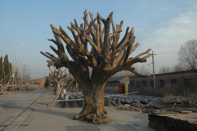 ai-weiwei-tree.jpg